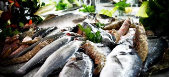 balık mevsim